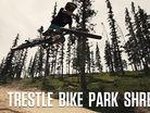 Trestle Bike Park Shredit