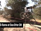 Case-o-Rama at Sea Otter DH