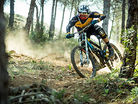 Phil Atwill | ROOST DH